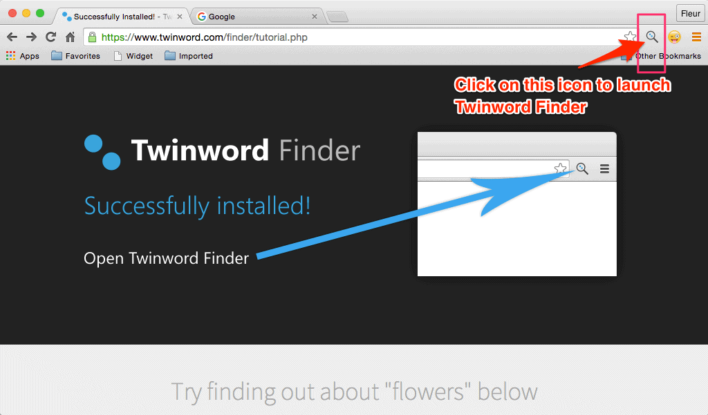 Screenshot of Twinword Finder browser extension with extension icon highlighted