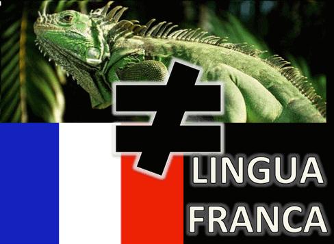 Lingua Franca caption