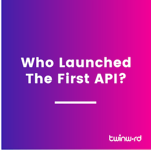 who launched the first api?