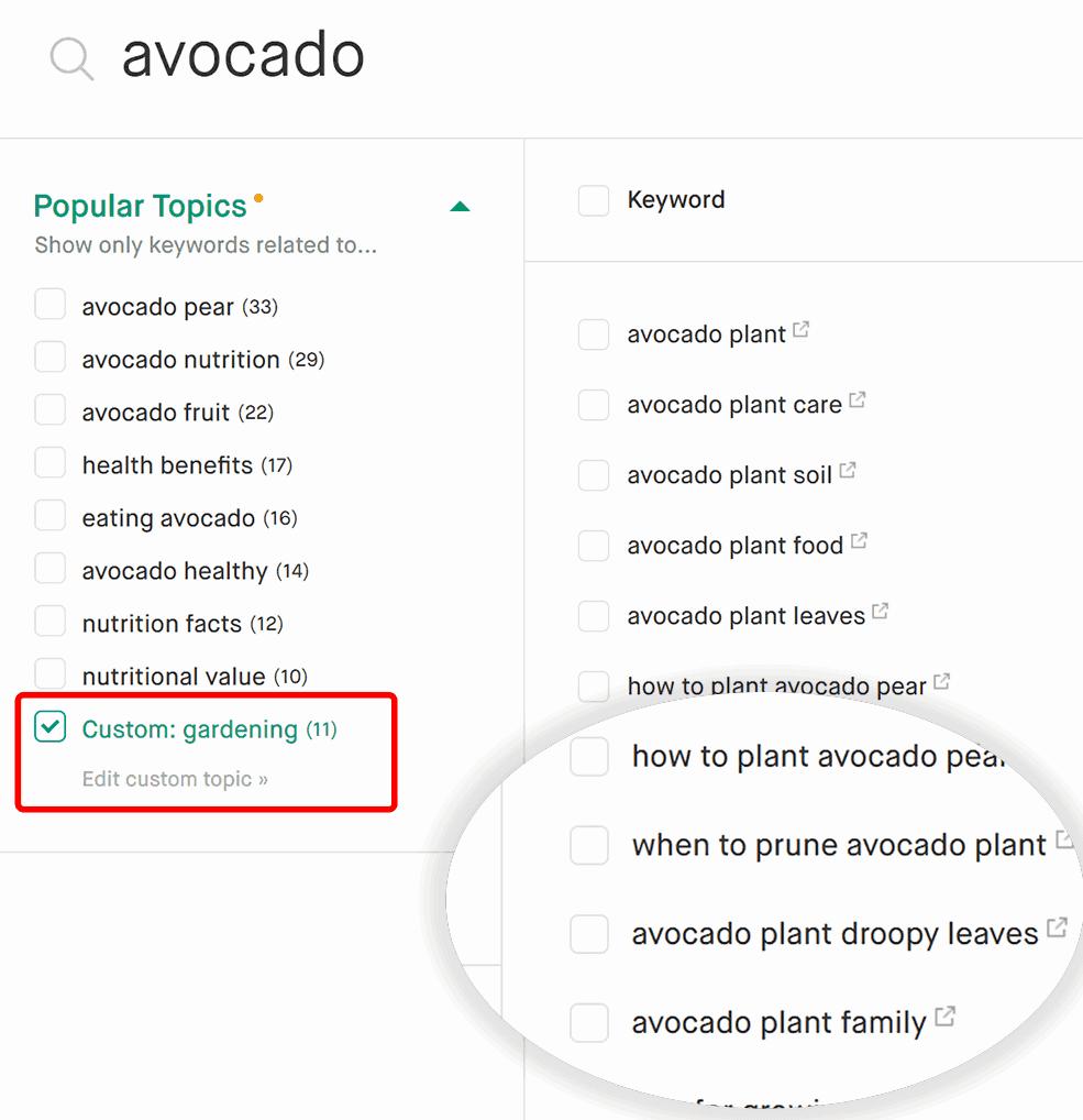 Screenshot of custom topic filter in action.