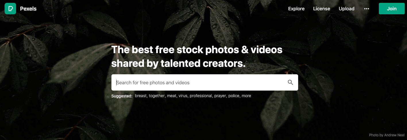 Website of Pexels