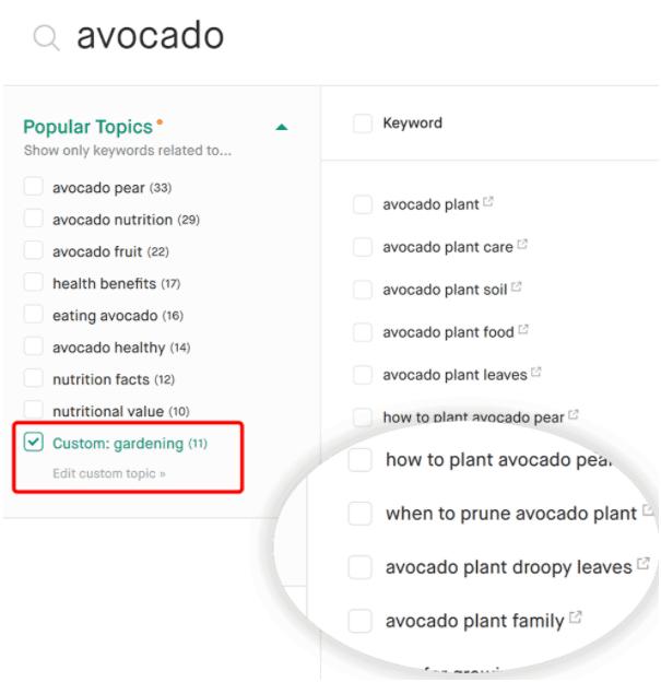 Twinword Ideas custom topic feature